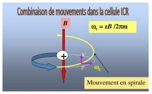 Aller à Résonance Cyclotronique Ionique à Transformée de Fourier : Aspects Fondamentaux et Perspectives
